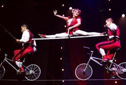 Circus 1903 ONLINE 02