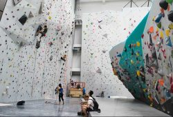Gorilla Climbing Gym Singapore