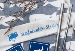 seastainable co online-2